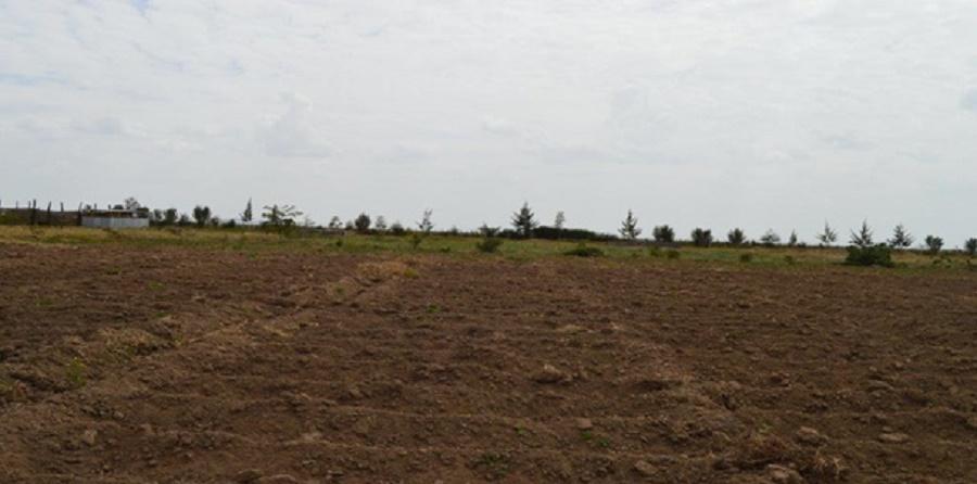 Narok Land-Oldonyo Rasha Area